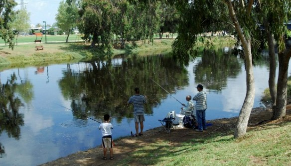 A spot of fishing in Hayarkon Park. Photo by Flash90.