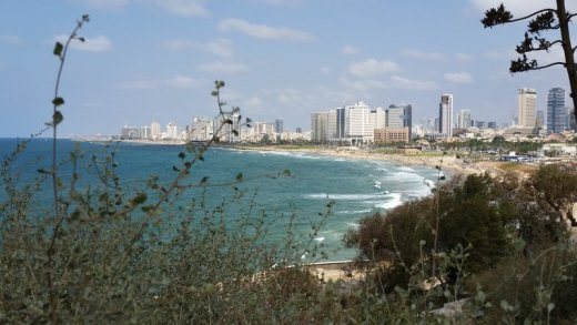 View of TLV shoreline