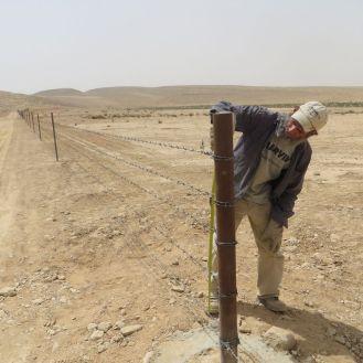 Yoni checks the fence