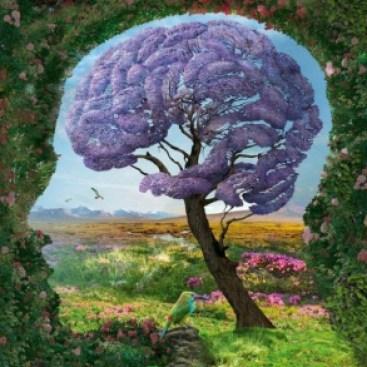 мозг-дерево