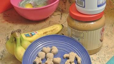 Homemade dog treats on a dish.