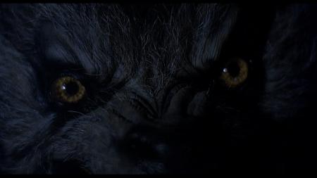 american_werewolf_london-closeup