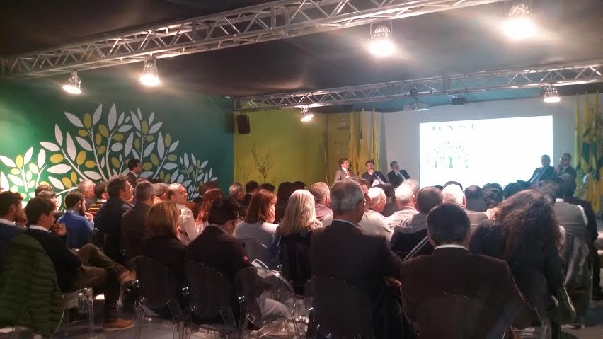 The Olive Tree exhinition: no problem for the Xylella, organic oil quality guaranteed