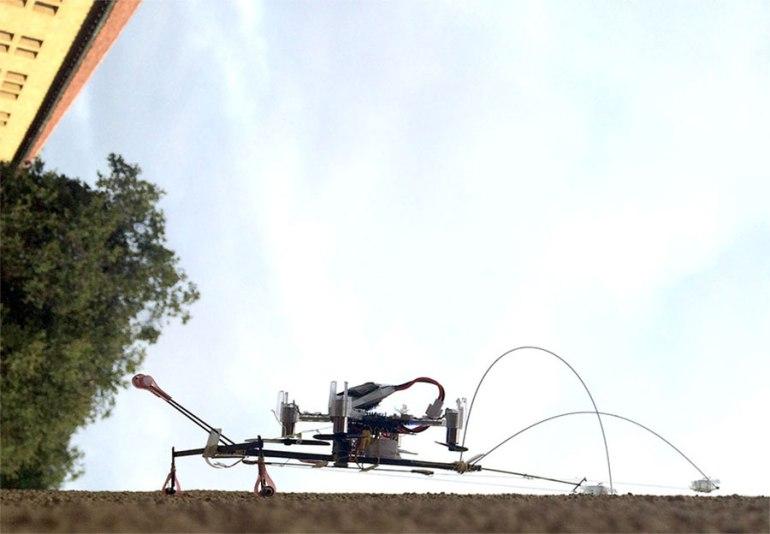 scamp-robot