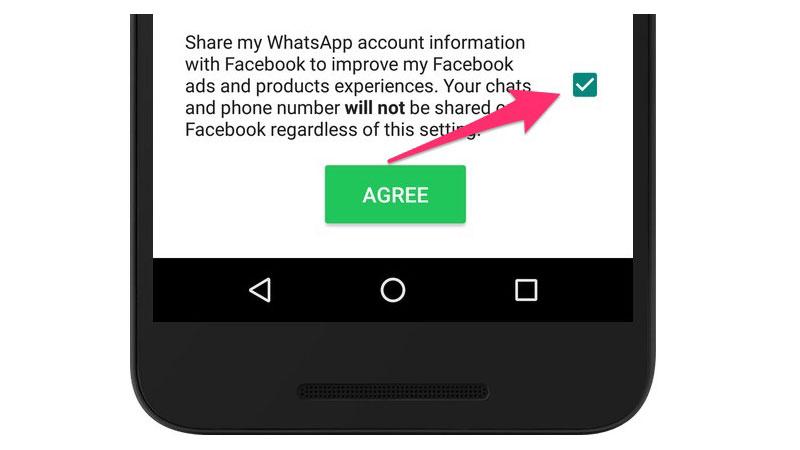 WhatsApp поделится телефонными номерами пользователей с социальная сеть Facebook