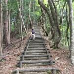 【山のふるさと村】プチ登山!ネイチャートレイルⅠ
