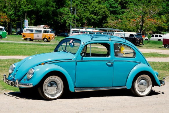10252_Real-Beetle (Large)