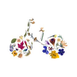 Pressed Flowers - Bicycle