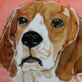 Beagle Day 8 of 30 Paintings In 30 Days.