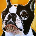 Boston Terrier Day 10 of 30 Paintings In 30 Days