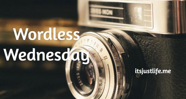 Wordless-Wednesday