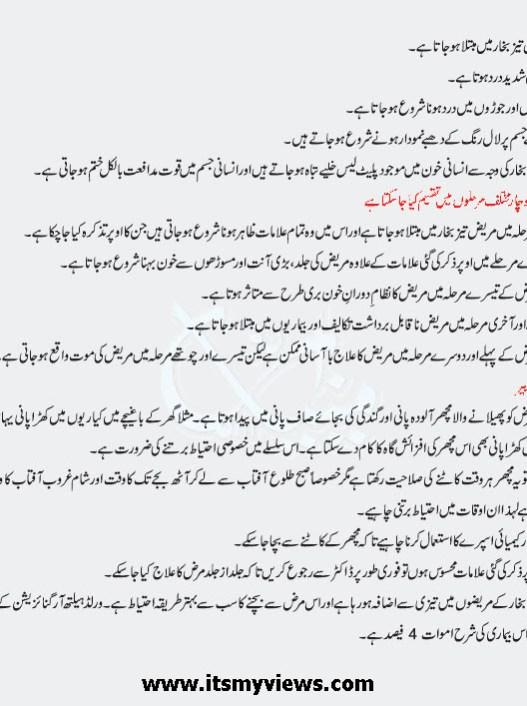 Dengue_Fever_dengue_virus_in_urdu_Symptoms_treatments_in_Pakistan_2