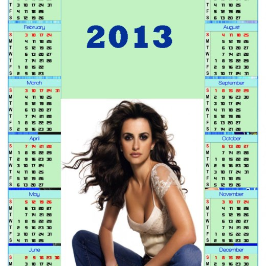 2013-calendar-Hollywood Actress Hot Girl Wallpaper