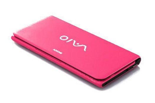 latest-handbag_laptop_pink-for-girls-2013 2014