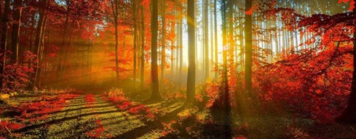 Beautiful-Natural-scene facebook coverpage picture 2013 2014