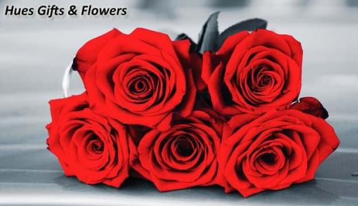 beautiful-red-rose-picture-wih-romantic-love-quote-to-share-at-facebook-for-girlfriend-2013-2014