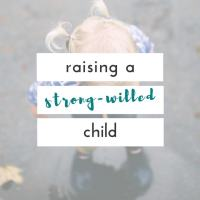 raising a strong willed child