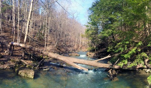 The river leading up to the Lower Falls.