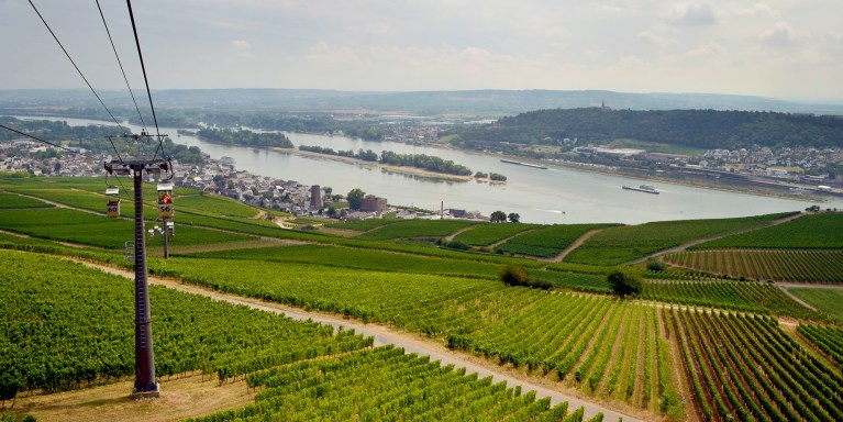 I've Been Bit! A Travel Blog :: Germany's Rüdesheim am Rhein