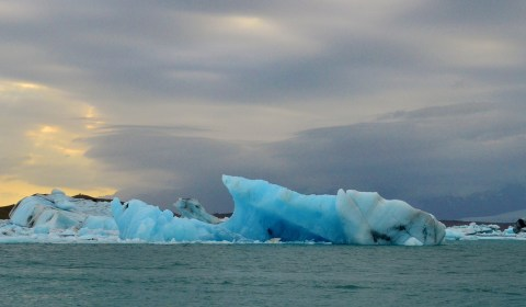 I still can't get over how blue the icebergs were!