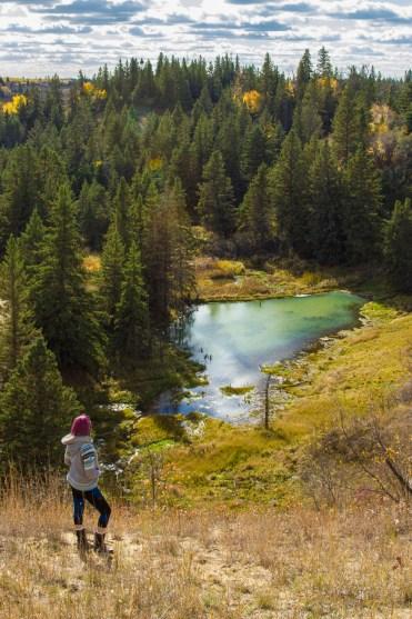 30 Walks 30 Days - Devils Punch Bowl, Spruce Woods Provincial Park, Manitoba :: I've Been Bit! A Travel Blog