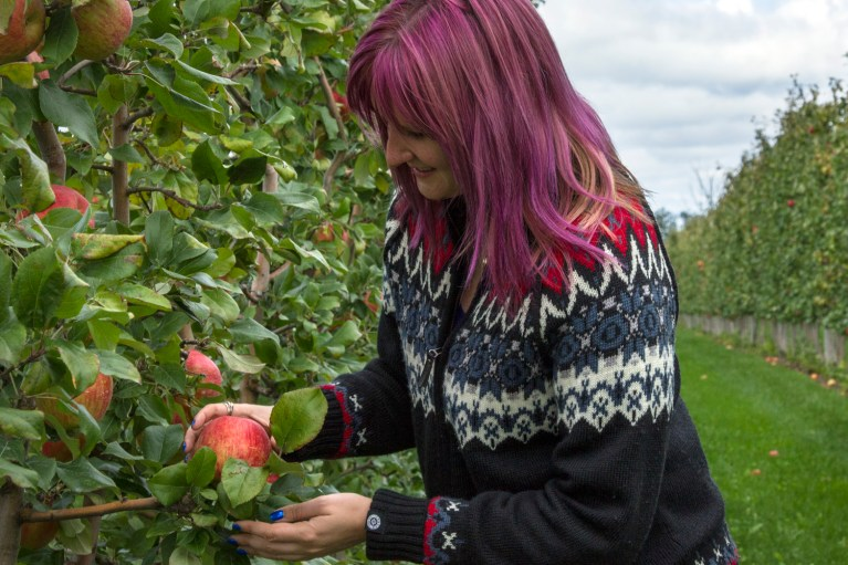 I've Been Bit! A Travel Blog :: Grey County Autumn Adventures - Apple Picking T&K Ferri Orchards Apple Picking
