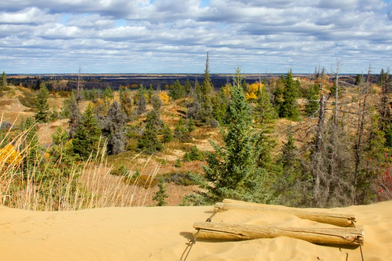 From the Top of the Sand Dunes, Manitoba Road Trip - 7 Days of Canadian Prairie Adventure :: I've Been Bit A Travel Blog
