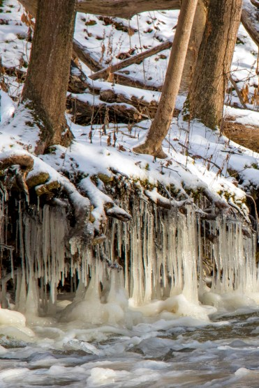 Icicles on Borer's Creek - Hiking Hamilton's Borer's Falls :: I've Been Bit! A Travel Blog