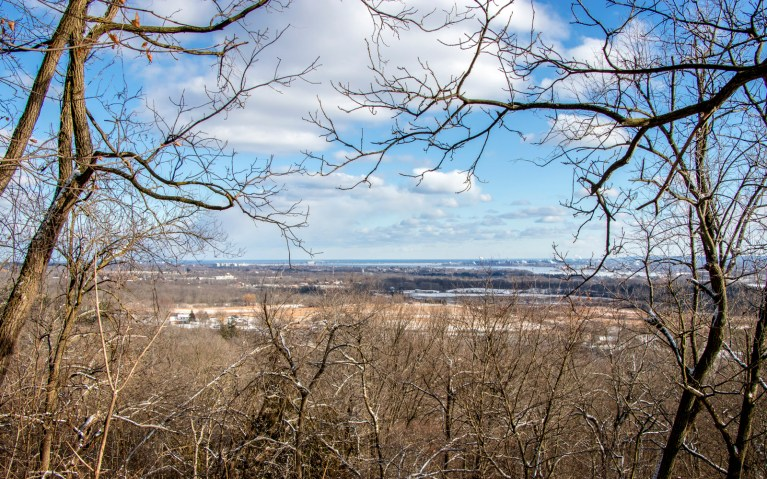 Overlooking Hamilton - Hiking Hamilton's Borer's Falls :: I've Been Bit! A Travel Blog
