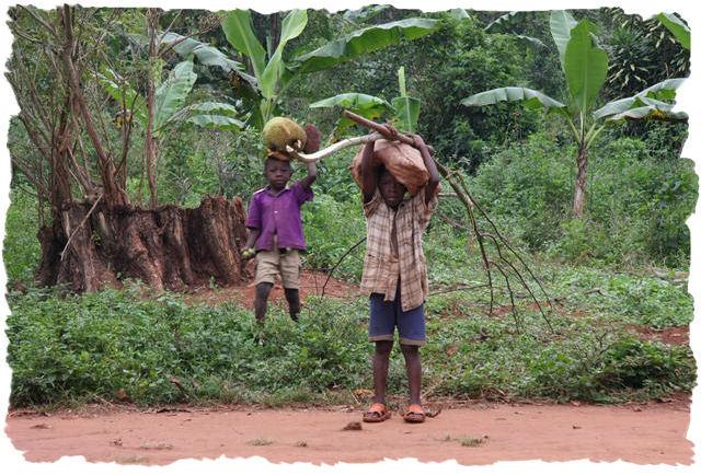 kinderen_halen_jackfruit
