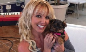 Britney has a new nanny… but not for her kids.