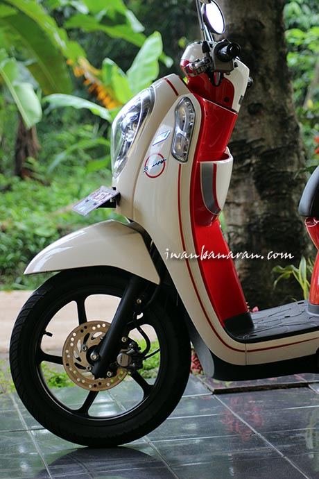 Scoopy