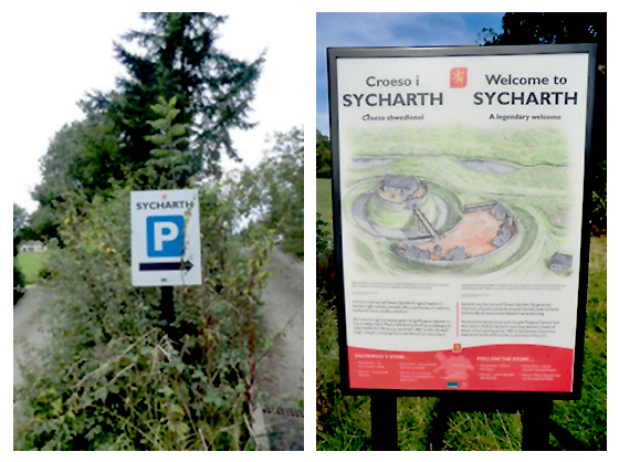 sycharth