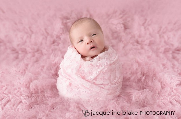 Newborn Photography with Pink Fur