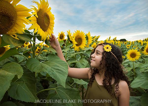 Green Barn Sunflower Photo Session