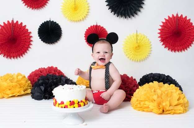 Pricing for a Cake Smash Photography Session, Ham Lake, Blaine, Andover
