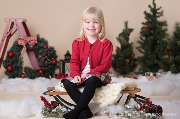 Winter wonderland photo session at Ham Lake photography studio, near blaine and andover