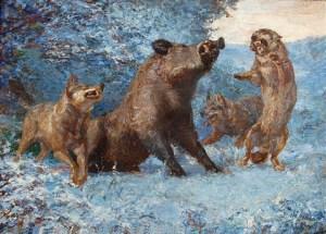 sanglier-attaqué-par-des-loups