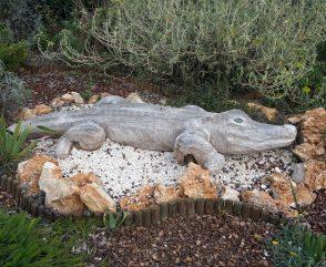 crocodile in nimes, france