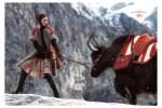 Hermes Fall-Winter 2008 . 2009 Ad Campaign  Mariacarla Boscono-tile
