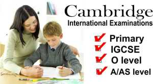 Cambridge tutor
