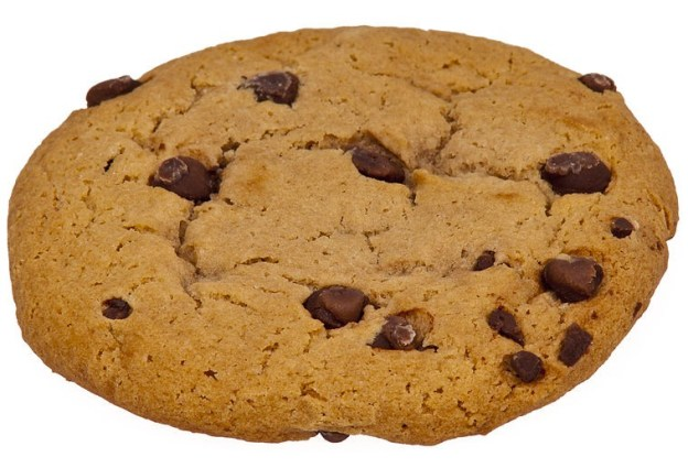 800px-Choc-Chip-Cookie