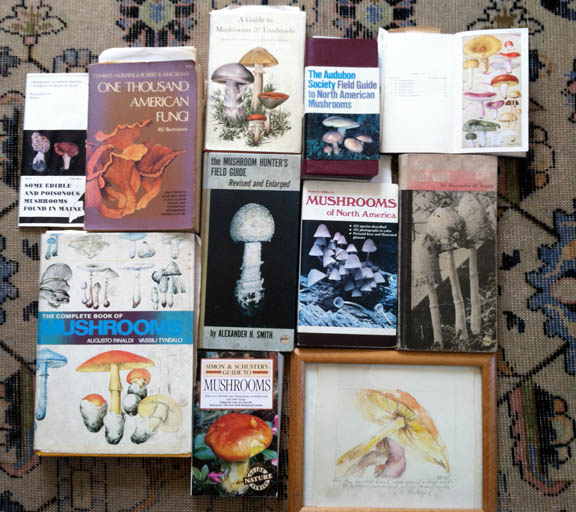 shroombooks_blog