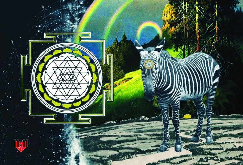 zebra collage post card