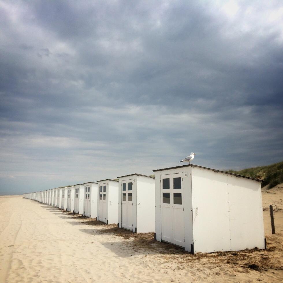 20140524 133214 48734546 Texelse strand
