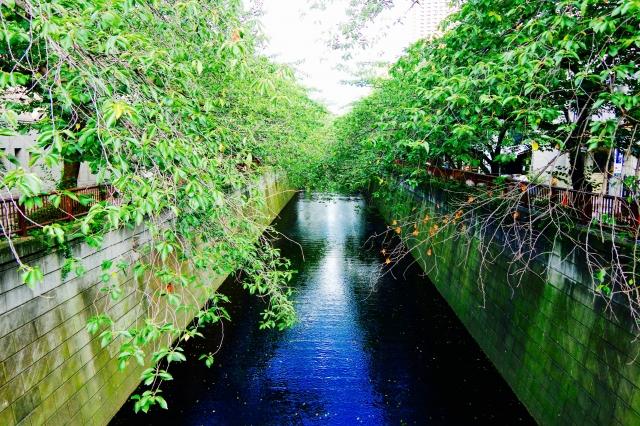 Megro river