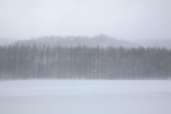 真冬の北の大地