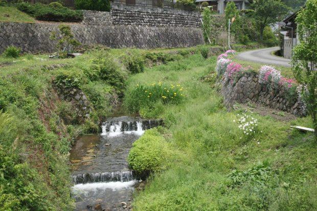京都 大原5月の風景