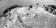 Hiroshima's Naked Island sold