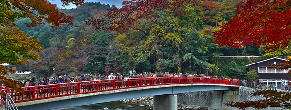 50 Reasons Why Japan Is Awesome (or, 50 Things To Do & See In Japan)